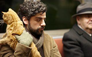 《醉乡民谣》是柯恩兄弟尝试音乐题材的作品,已荣获今年戛纳影展评审团大奖。(金马提供)