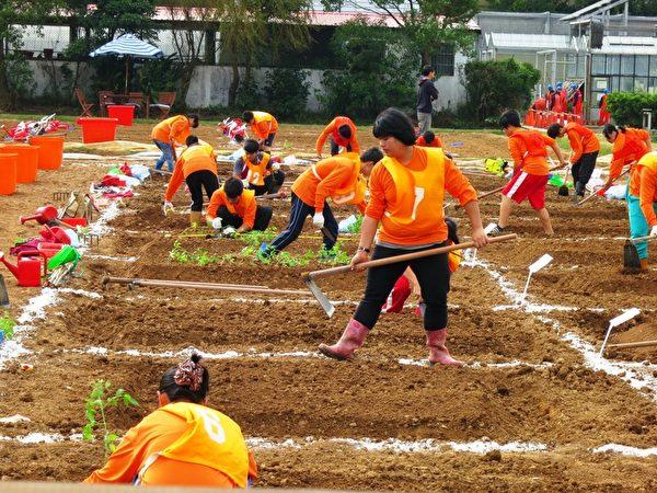 台灣學生農技競賽。(吳美蓉/大紀元)