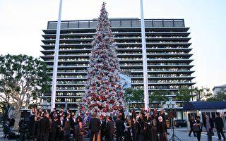 聖誕樹點燈傳統 照亮洛縣分享歡欣