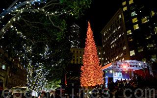 旧金山加利福尼亚大道圣诞树点灯