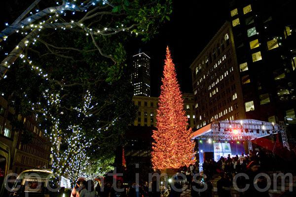舊金山加利福尼亞大道聖誕樹點燈
