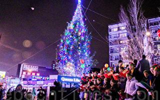 30多呎聖誕樹點亮 法拉盛喜迎佳節