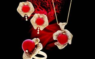 「神戶珍珠」歡慶2013年聖誕節