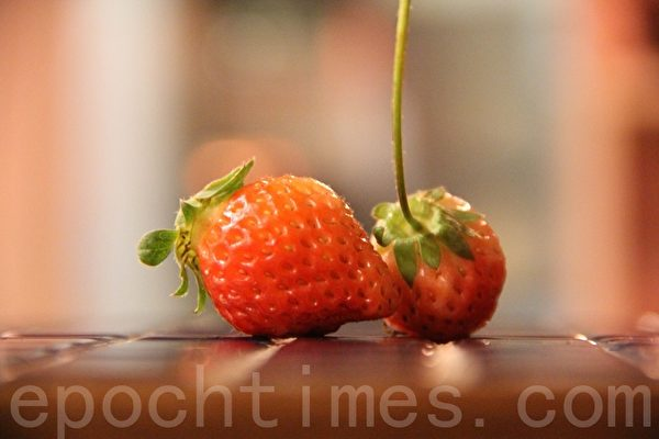 新鲜草莓strawberry(摄影:ALEX/大纪元)