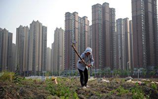 房價高企民無奈,望樓興歎夢難圓。中共十八屆三中全會提出的土地改革讓民眾有一絲希望:可以到鄉下買地建房。但在10日中共國土部部長姜大明強調,這是堅決不能允許的。(AFP)