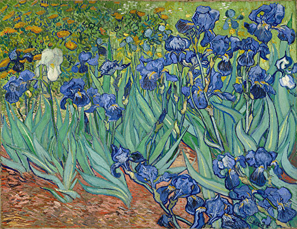 "梵高(Van Gogh)的""鸢尾花""(Irises)。(The J. Paul Getty Museum)"