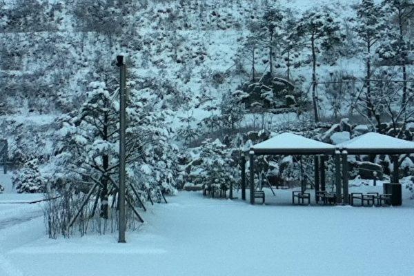 美籍華人在韓國:冬日的笛聲