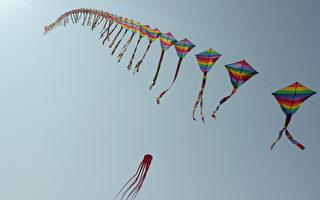 2014年乌山头水库风筝嘉年华,展出的长串风筝。(嘉南农田水利会提供)