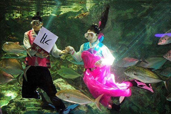 2014年1月26日,南韩首尔,水族馆人员穿着韩服,在鱼群中向游客拜年。(JUNG YEON-JE/AFP)