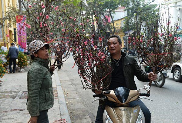 2014年1月21日,越南河内,民众购买应景的花卉。(HOANG DINH Nam/AFP)
