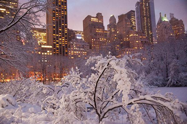 紐約市週一大早開始下大雪,紐約中央公園宛如冰雪童話世界。(戴兵/大紀元)