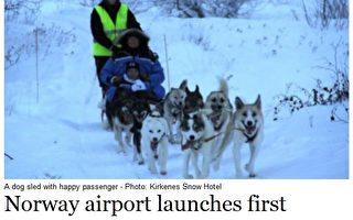 挪威希尔克内斯冰雪旅馆(Kirkenes Snow Hotel)从1月下旬开始提供从机场到旅馆的狗拉雪橇运输服务。(图片来源:挪威媒体The Local网页撷图)