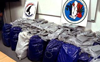 2014年2月21日,法国勒哈佛(Le Havre)港口查获1.4公吨古柯碱,创历来新高。(JULIAN COLLING/AFP)