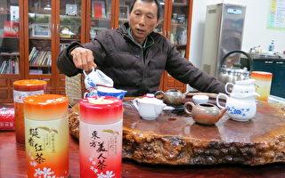膨风茶的常胜军 研发红茶新品受欢迎