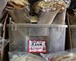加州野生动物官员最近在旧金山查获了2,000多磅违禁的鲨鱼翅。图为2011年旧金山一商店贩售的鱼翅。(Justin Sullivan/Getty Images)