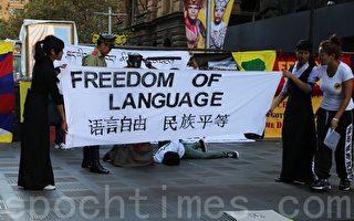 """悉尼""""西藏抗暴日 """" 抗议中共宗教文化灭绝"""