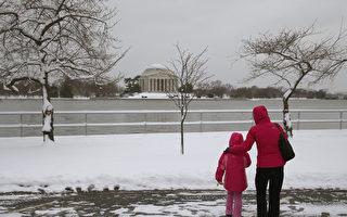 来自中国的一对母女游客注视着大雪过后被雪覆盖的樱花树。据国家气象局的预测,今年樱花最盛开的时间是4月8日至12日。(图片来源:Mark Wilson/Getty Images)