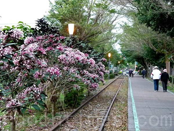台东旧铁道路廊是一条温馨有特色的休闲步道。(龙芳/大纪元)