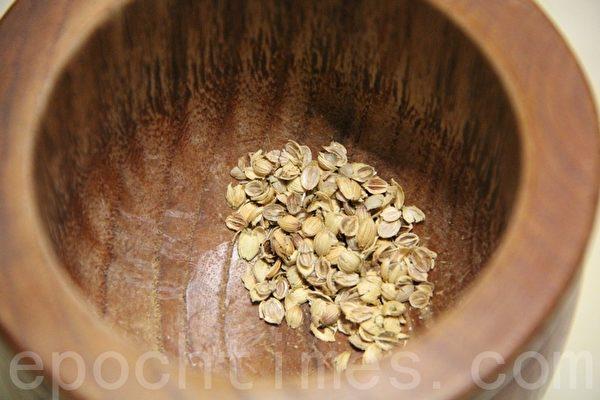 香菜子coriander seed(攝影:ALEX/大紀元)