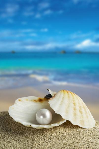 珍珠被看作是贝蚌的眼泪。(图/fotolia)