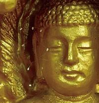 2005年,韩国的很多佛像上优昙婆罗花开放,佛经中认为是吉兆祥瑞,预示转轮圣王下世。(大纪元)