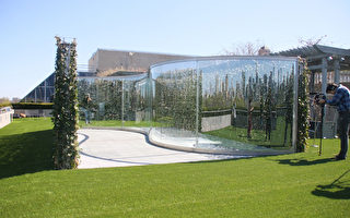 """大都会艺术博物馆(Metropolitan Museum of Art)又增加了新的游览点,即由美国艺术家Dan Graham设计的作品""""Hedge Two-Way Mirror Walkabout""""。(王依澜/大纪元)"""