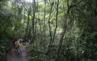 礁溪鄉林美社區山明水秀,著名景點林美石磐步道遊客眾多。(曾漢東/大紀元)
