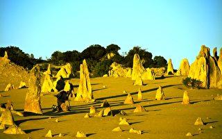 西澳人將可以在西澳日長週末期間免費遊覽西澳30間著名的國家公園。圖為Nambung國家公園的尖峰石陣(The Pinnacles)。(林文責/大紀元)