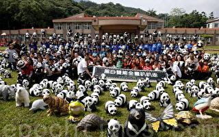 1,600隻貓熊大軍,浩浩蕩蕩的,來到了偏遠的南投瑞竹國小。(廖平風/大紀元)