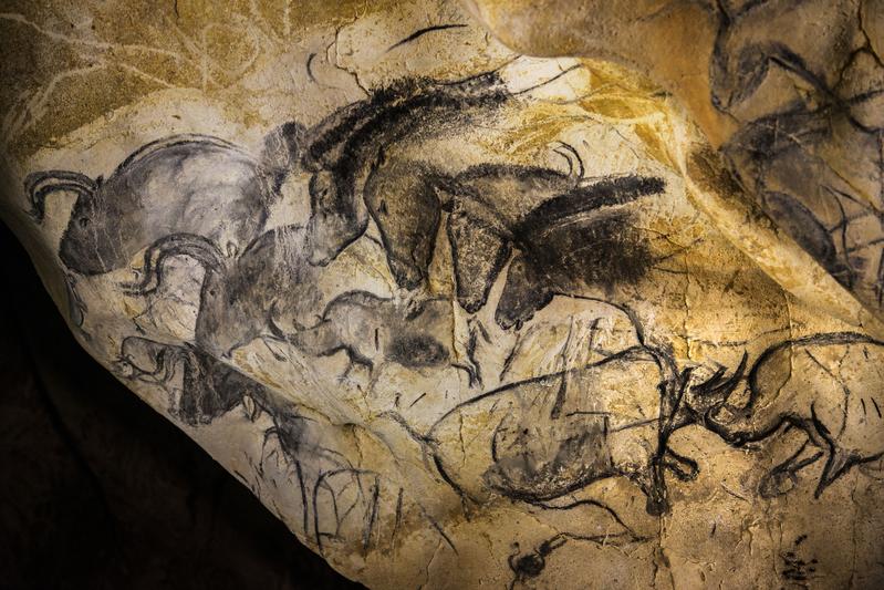 肖維巖洞的壁畫被認為是世界上已知最早的史前藝術。繪製的動物形象非常逼真。(AFP PHOTO/JEFF PACHOUD)