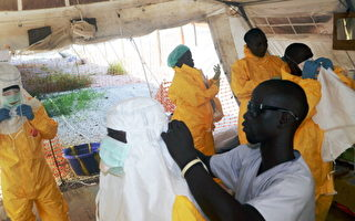 伊波拉病毒失控 已飆升至467人死