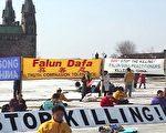 2002年3月传出江泽民集团对大陆法轮功学员下达的灭绝人性的开枪射杀命令时,加拿大法轮功学员决定前往渥太华的国会山庄,举行上百人36小时的绝食抗议。(明慧网)