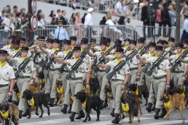 陆军军犬第132军团方阵(AFP)