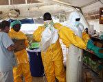 西非伊波拉病毒疫情持續擴大,感染與死亡人數本週增加16%。圖為無國界醫生6月28日在幾內亞的隔離區工作。(AFP)