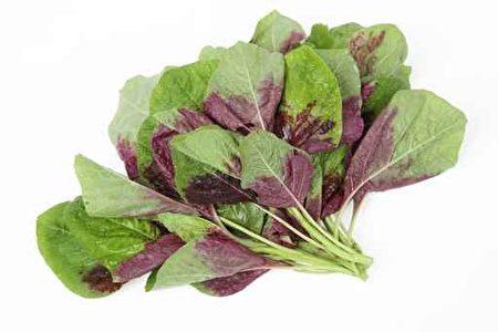 紫莧菜能抗輻射、抗突變、抗氧化,與其含硒有關。(Fotolia)