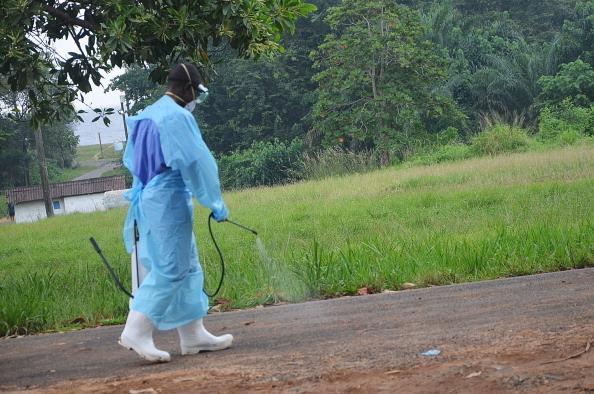 西非伊波拉疫情持續擴大 673人死