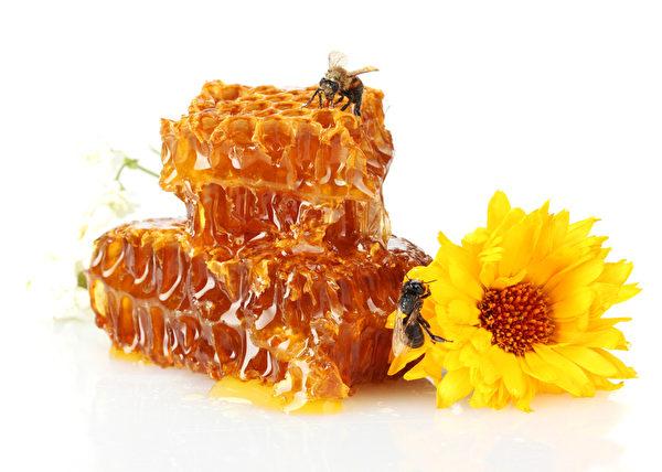 蜂巢蜜。(Fotolia)
