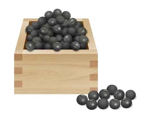 黑豆(Black Soybean)。(图:Fotolia)