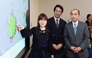 涉嫌STAP細胞論文造假的日本理化學研究所的STAP細胞研究團隊的組長小保方晴子(左一),日本理化學研究所副所長笹井芳樹(中)。(GettyImages)