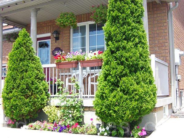 巧用空间:顶棚、护栏、地上、花池四层都有花,但不觉拥挤,树在花池里的位置也很得体。(李文笛 /大纪元)