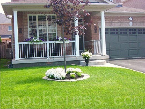 草地上没有一棵杂草,树墩用水泥砖垒的整整齐齐。所有的花以白色为主调,更衬托了主人家的整洁。(李文笛 /大纪元)