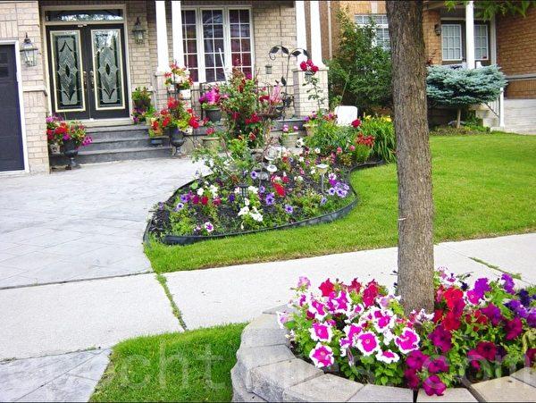 花池用水泥砖和塑料板围起来草地和花互不干扰,整齐而漂亮。(李文笛 /大纪元)