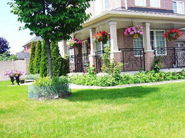这街头房佈置的简洁明快,树边上还围上网子防止兔子吃花。房檐上也吊了不少吊花,门前对称的两盆花很有艺术感。(李文笛 /大纪元)