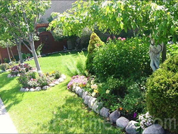 这街头房围着树作花池,种了许多石竹花和别的花。(李文笛 /大纪元)