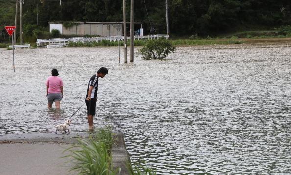 2014年8月10日,日本高知縣日高市遭強颱夏浪襲擊,農民查看被洪水淹沒的稻田。(朝日新聞/Getty Images)