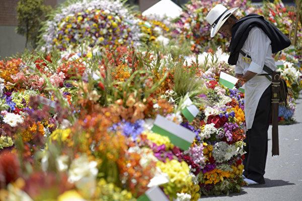 2014年8月10日,哥伦比亚鲜花节游行,美丽花卉。(Raul ARBOLEDA/AFP)