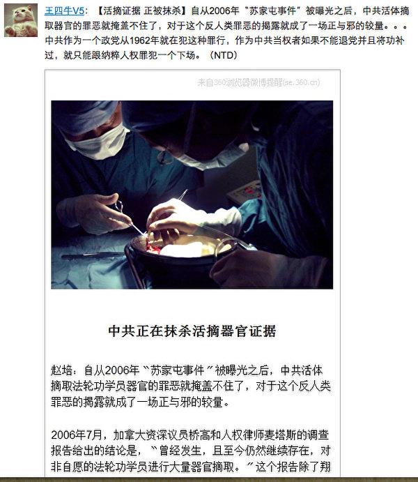 這則沒被刪除的新浪微博敏感信息,轉載自新唐人的微視頻「中共正在抹殺活摘器官證據」。(網絡截圖)