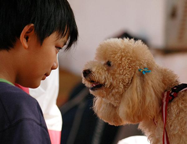動物是以心電感應的方式跟人溝通,通過感應發送和接收信息。(王嘉益/大紀元)
