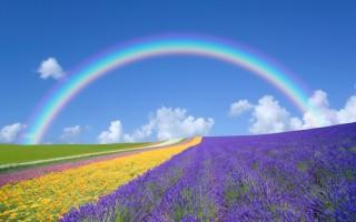 完善自己那顆包容、體諒、真誠之心,隨著時光的點點流逝,你必然會擁有一顆可升入天堂的完美心。(Fotolia)