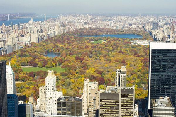 洛克菲勒中心眺望中央公园。(戴兵/大纪元)